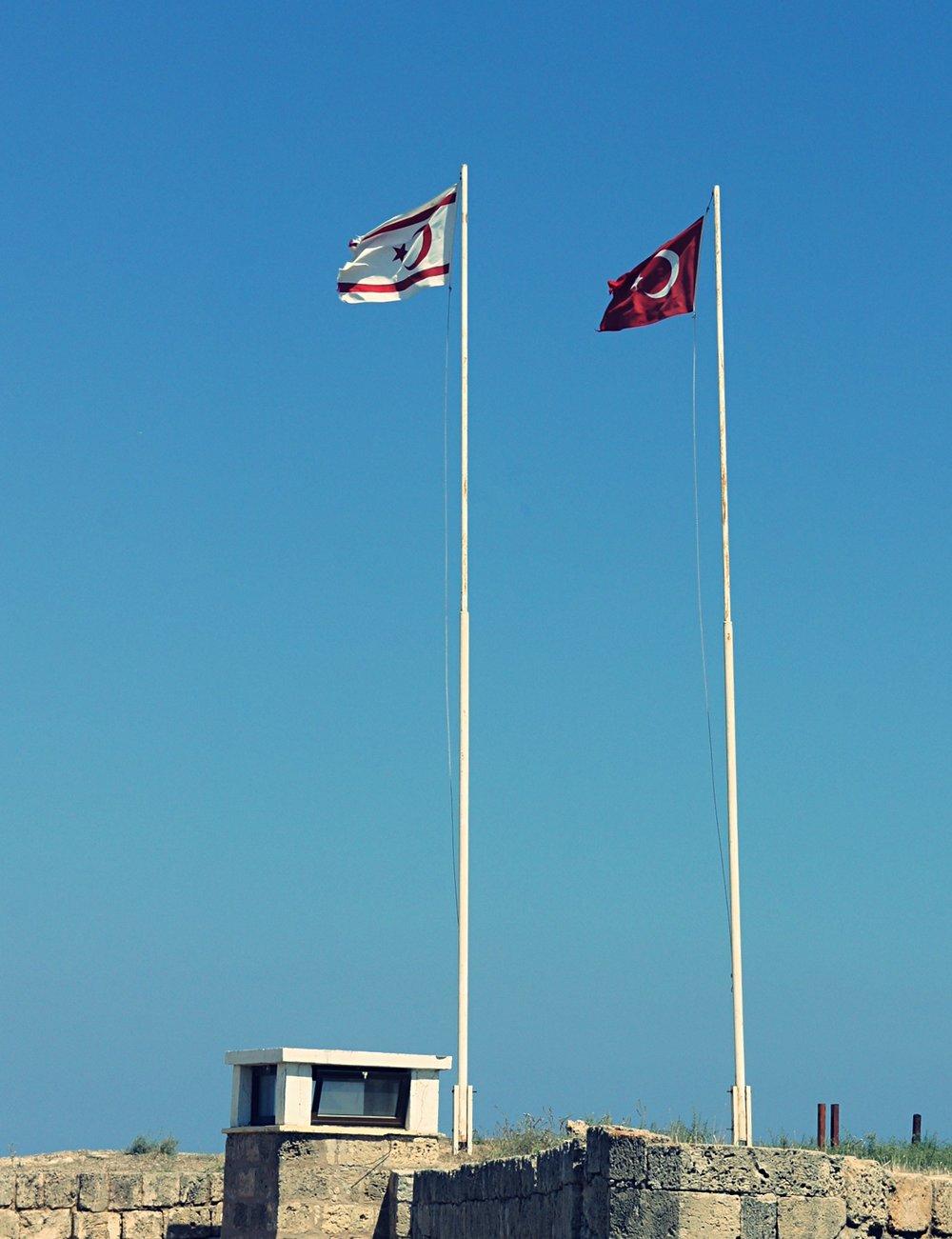 flag_altertonative.JPG