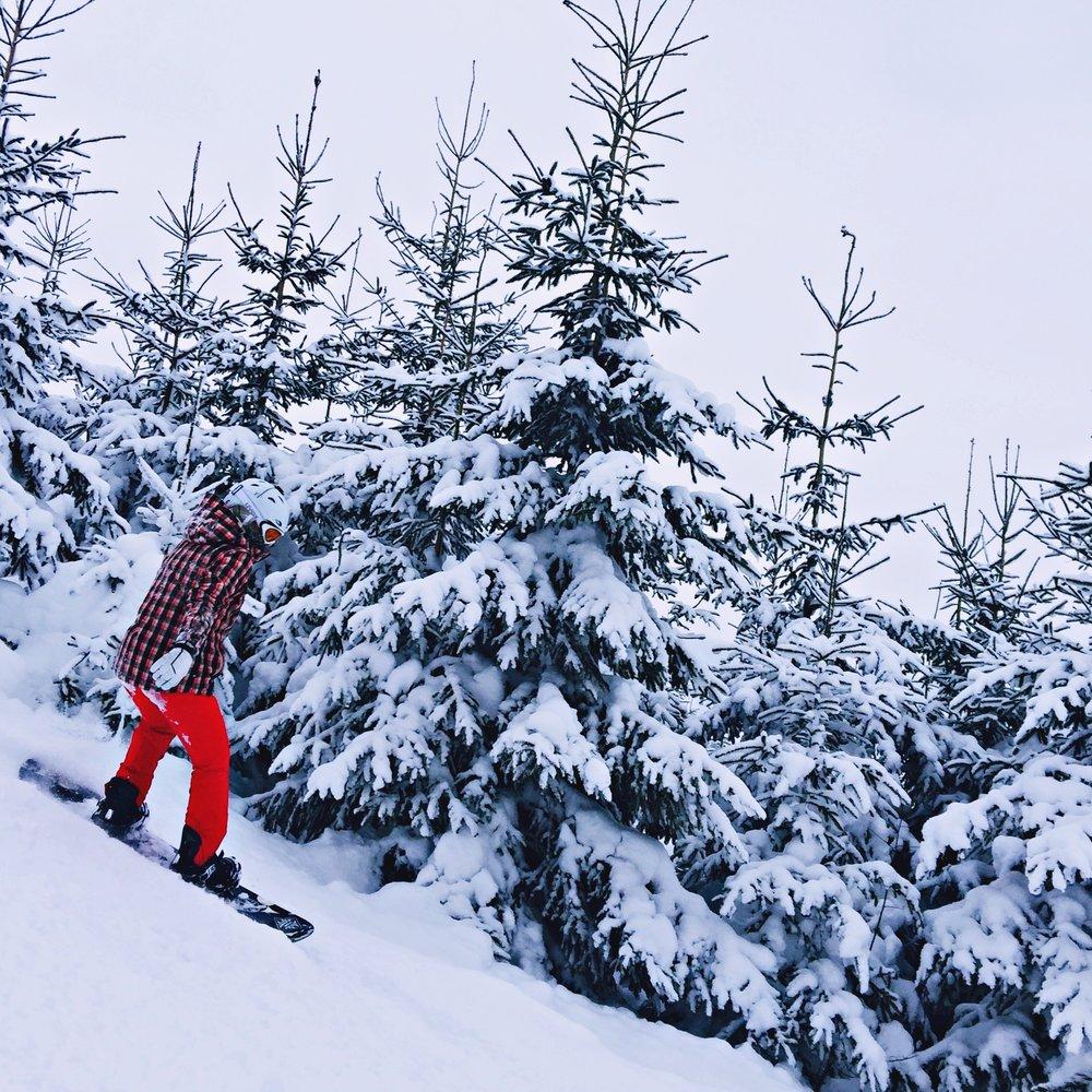 snowboard.altertonative.JPG