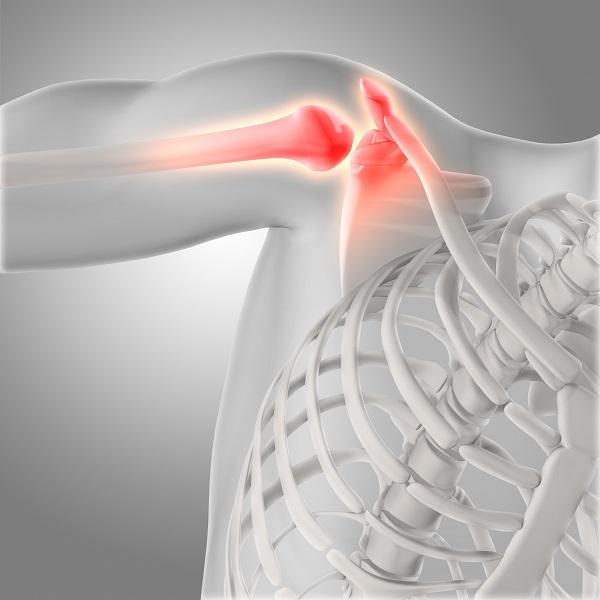 shoulder-joint.jpg
