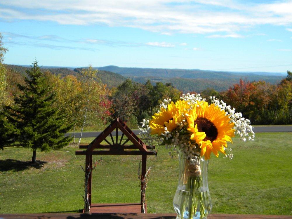 A Romantic View