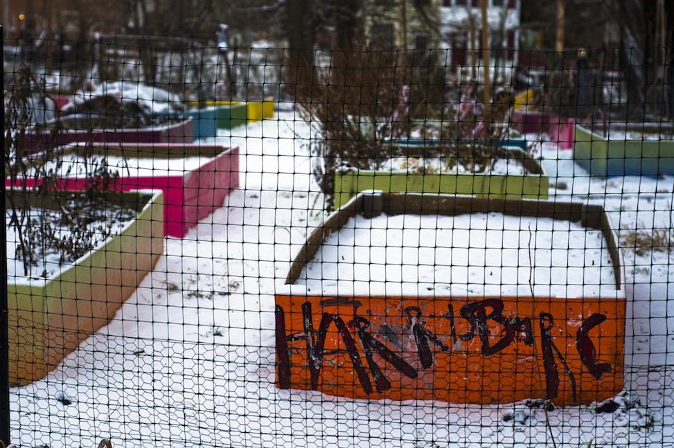 Community garden, Harrisburg, pennsylvania