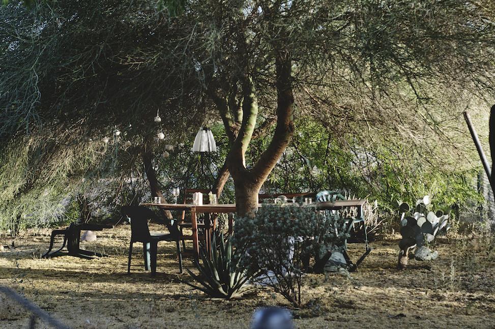 Hoelzen house backyard, phoenix, arizona