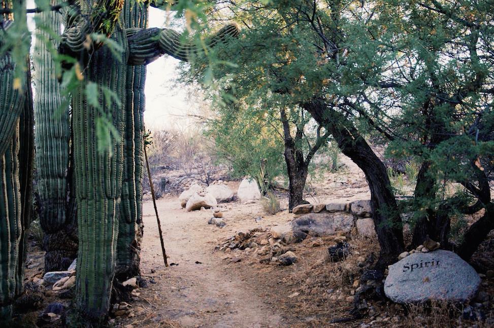Spirit path, canyon ranch, tucson, arizona