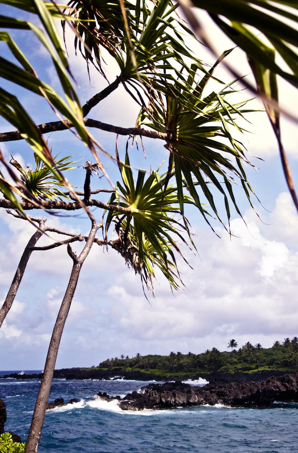 Wainapanapa State Beach, maui, hawaii