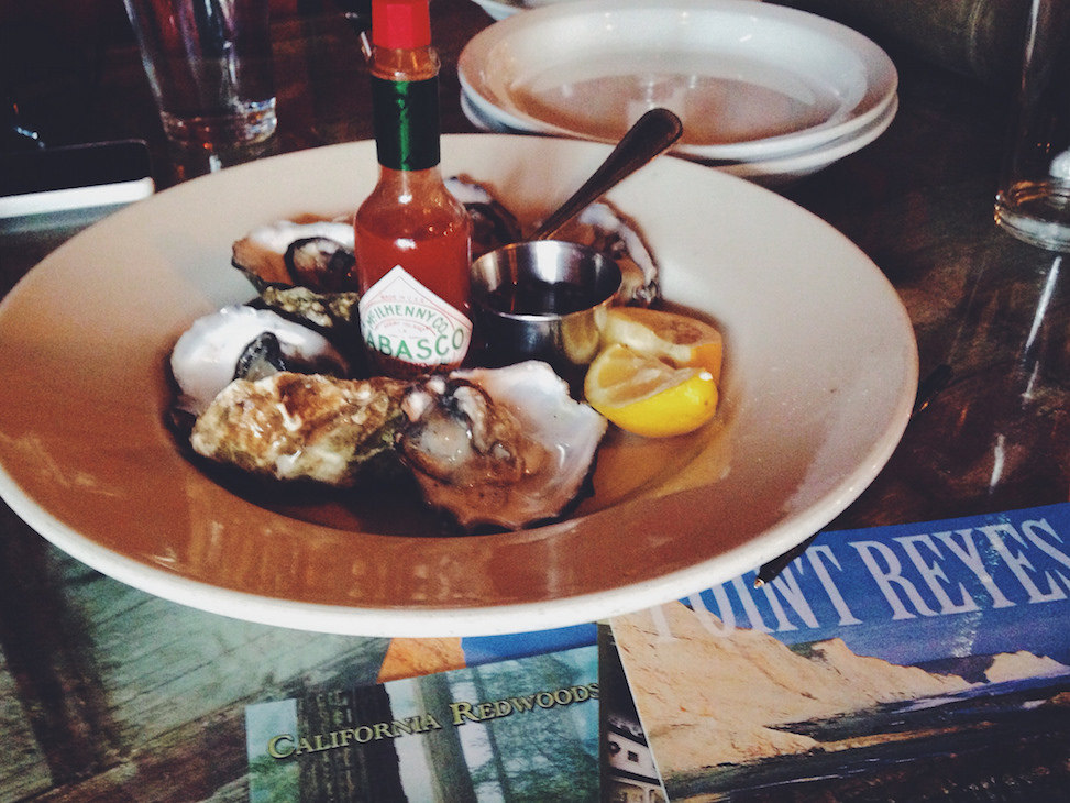 Oysters, Point Reyes, California