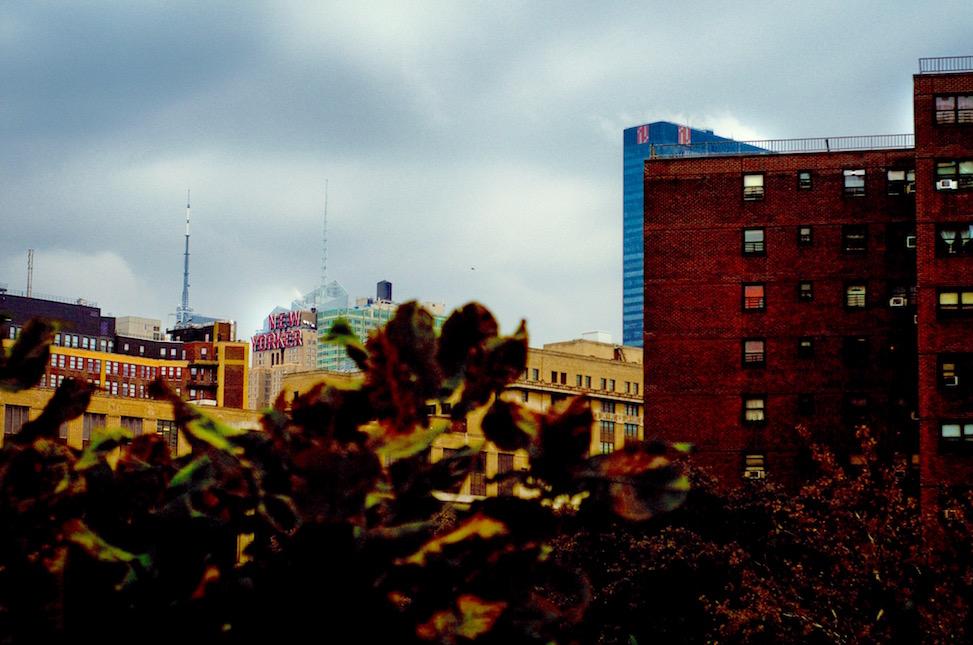 high line, travel, manhattan, new york city, travel photography, travel stories
