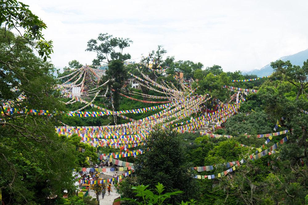 nepal-00011.jpg
