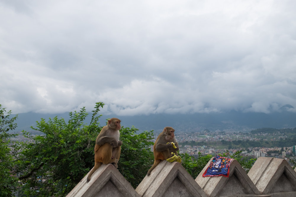 nepal-00018.jpg