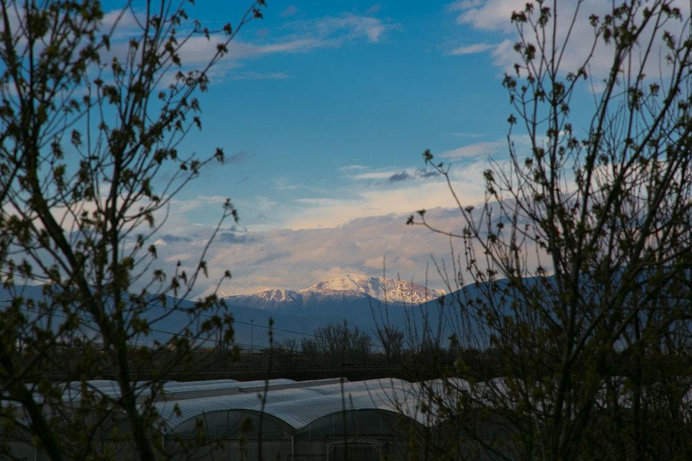 tbilisi-georgia-00001.jpg