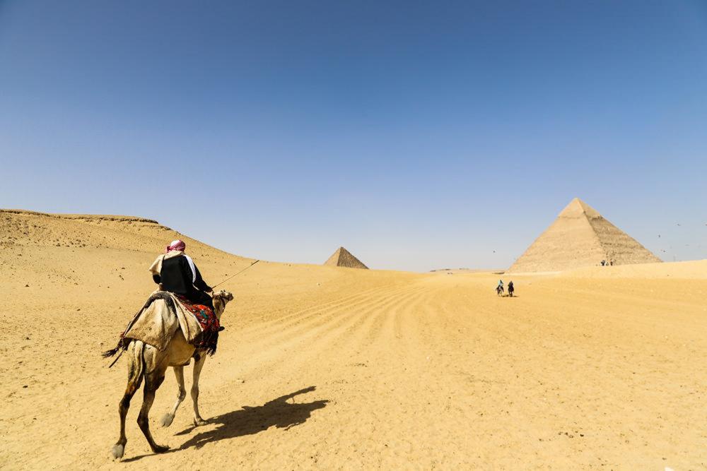 Camel riding to the pyramids