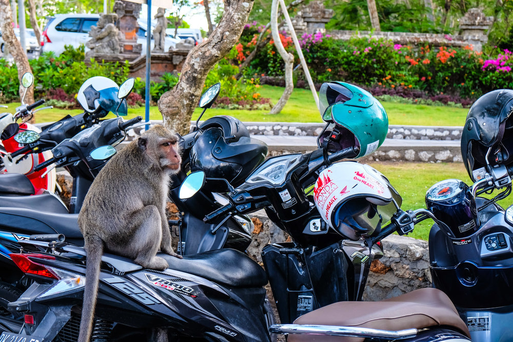 bali-indonesia-00029.jpg