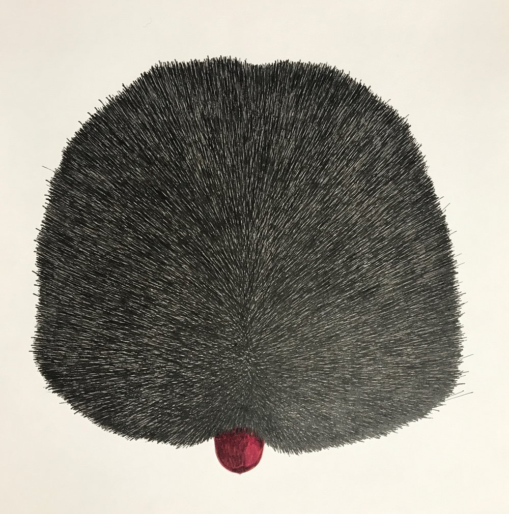 Fur, 2018, pen on paper, 25x25cm