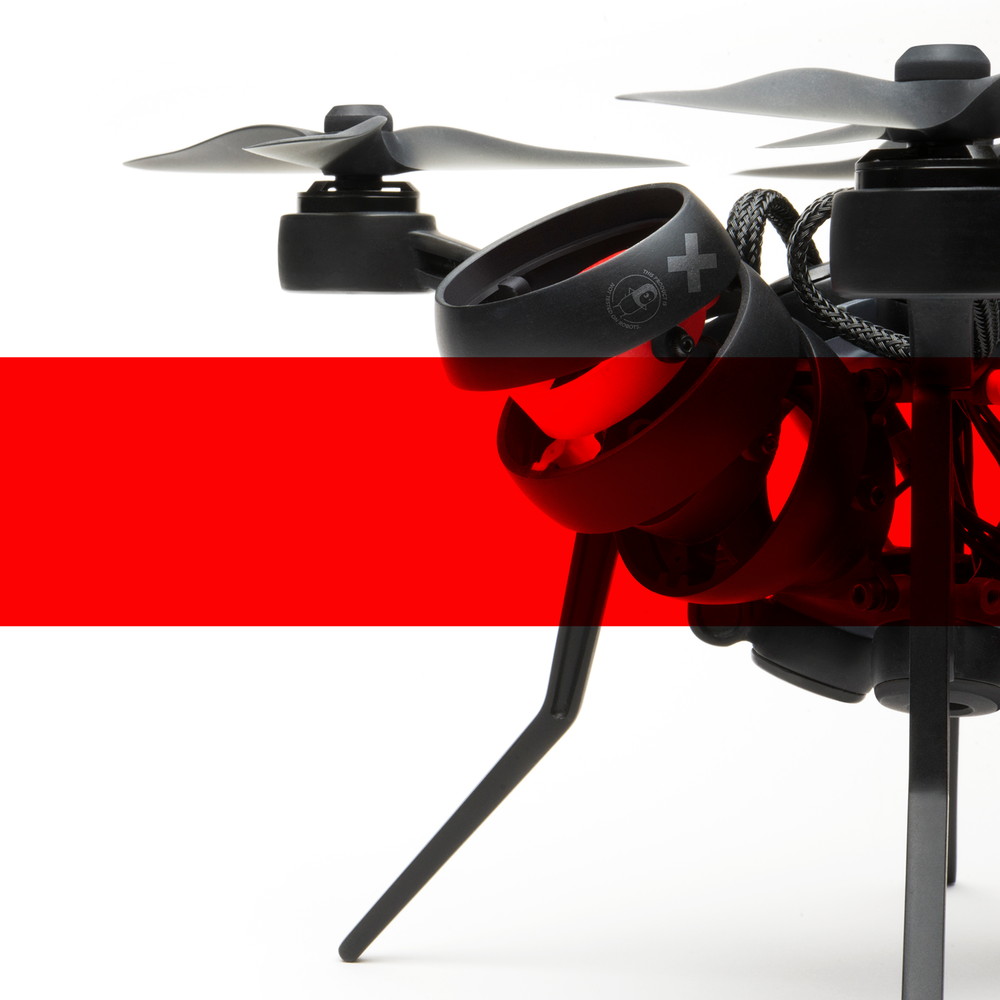 SCIFLY - bionic drone