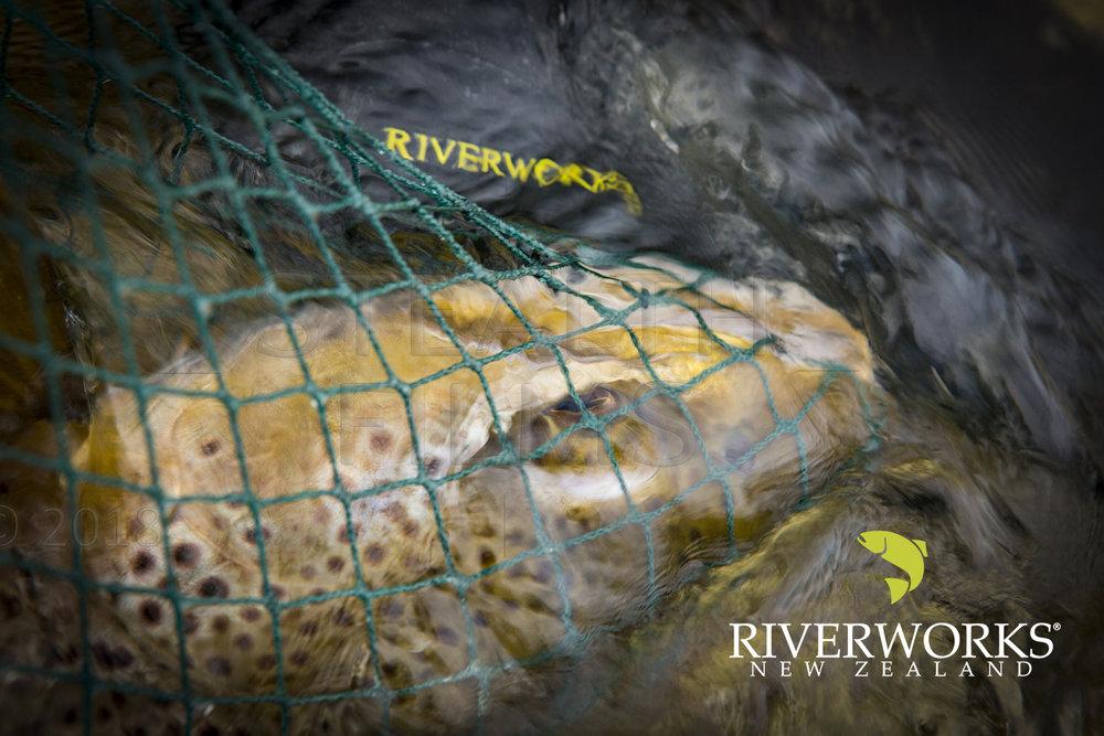 Riverworks 1_1500_W+ Logo.jpg