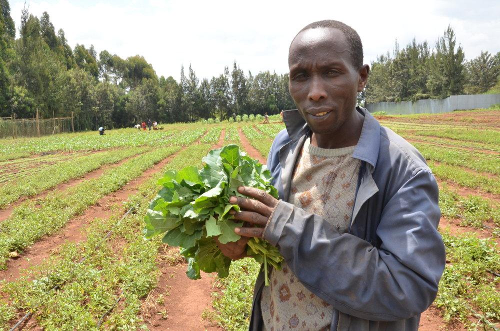 Spring 2014_Food Security photo 4.jpg