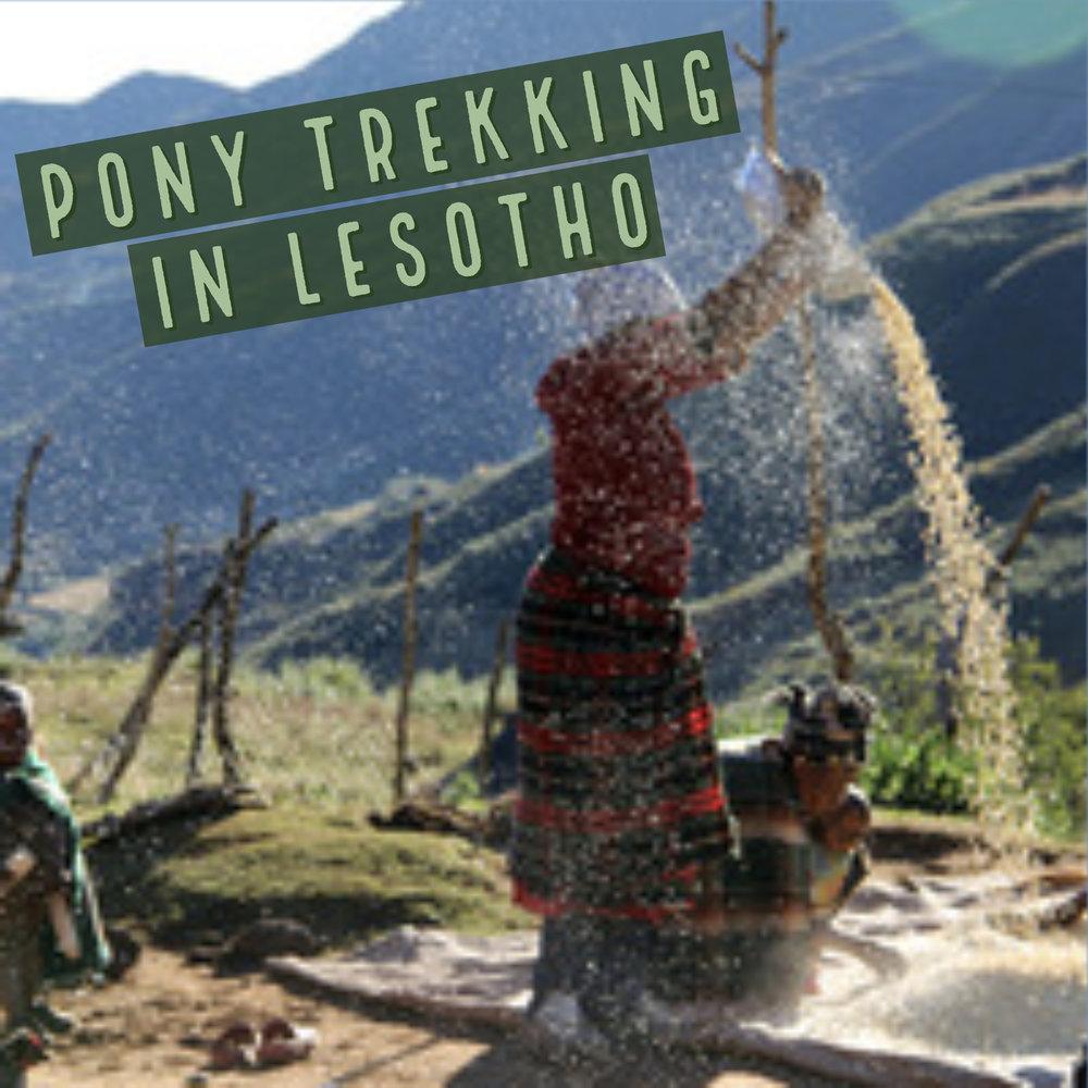 Pony Trekking in Lesotho.jpg