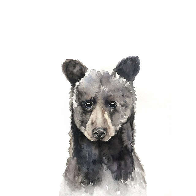 Black bear watercolor | ampersandmother.com