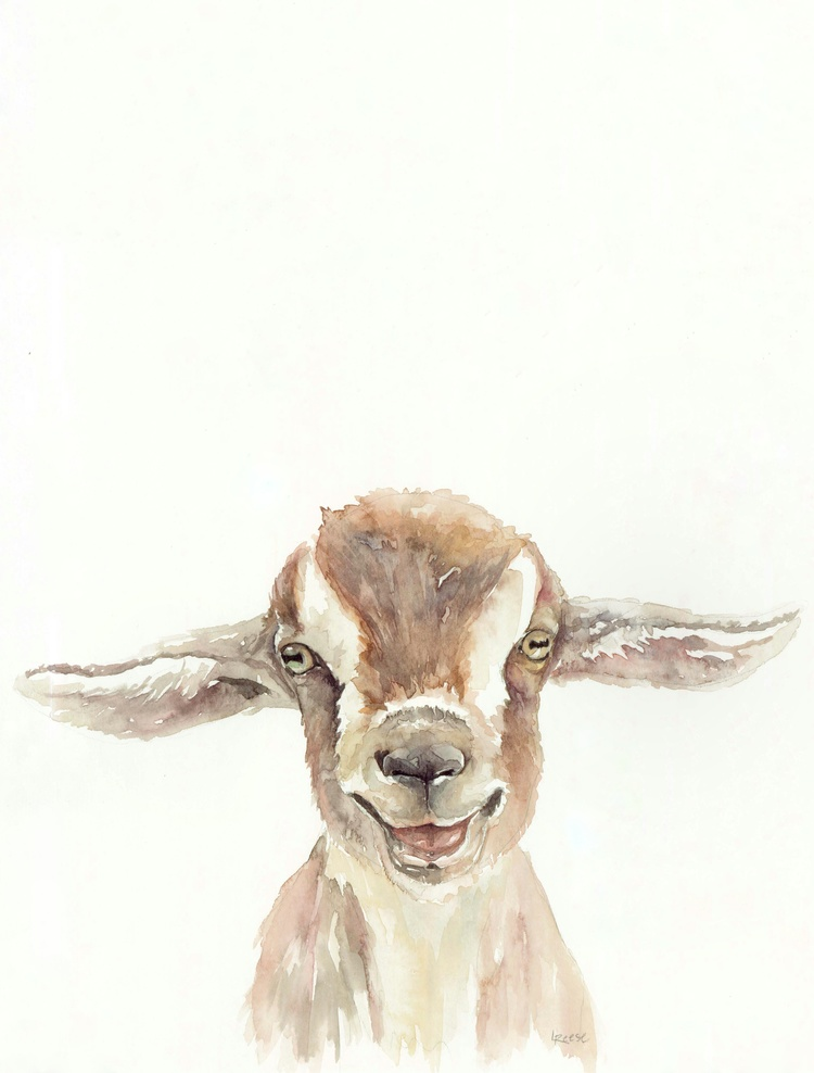 Goat watercolor | ampersandmother.com