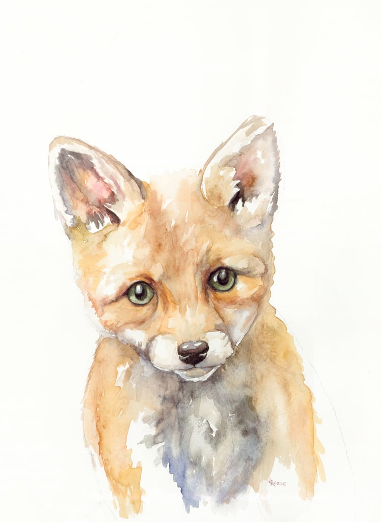 Baby fox watercolor | ampersandmother.com