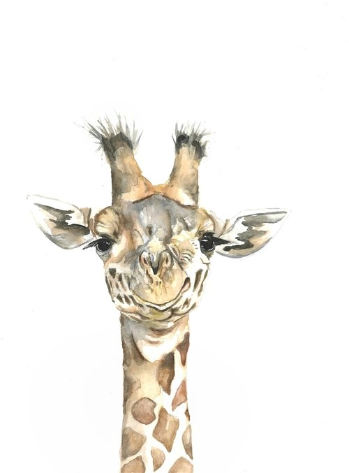 Giraffe watercolor | ampersandmother.com