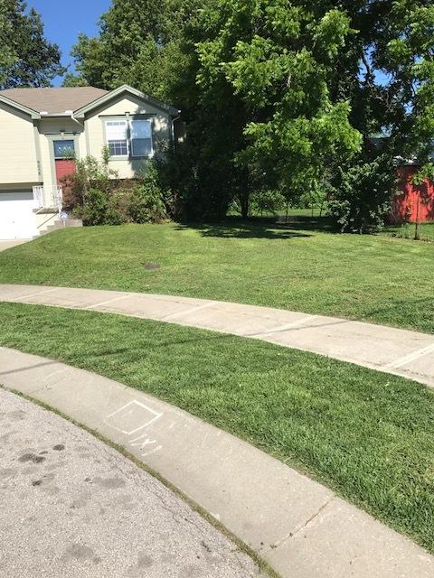 front lawn split level.JPG