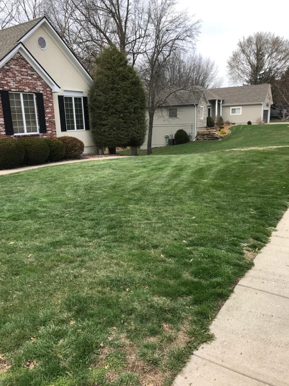 side lawn.jpg