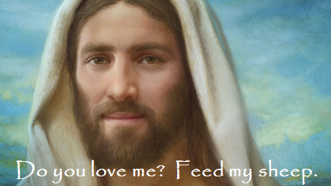 Do You Love Me   Feed My Sheep.png