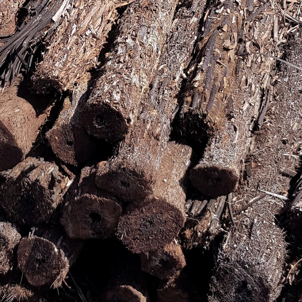 SLEEPERS & LOGS -