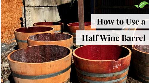 Half Wine Barrels Complete Landscape Supplies