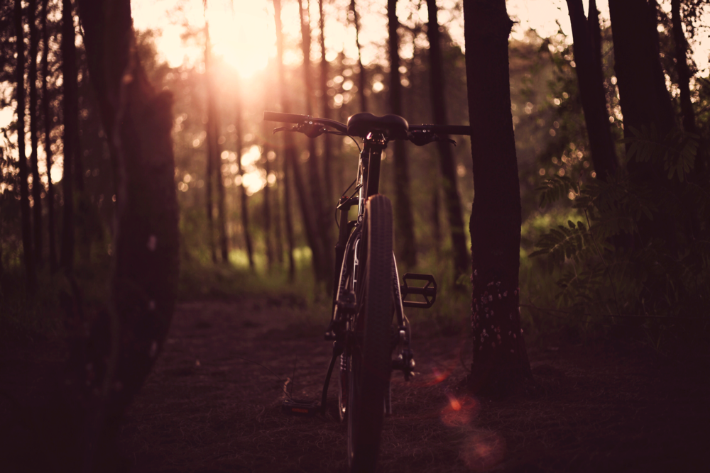 Healthy Active Living - EXPLORE THE MANY TRAILS OF MAPLETON TOWNSHIP