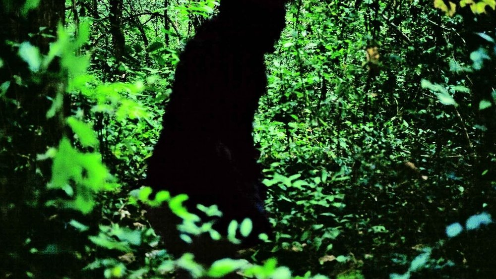 #40) Uncle Boonmee Who Can Recall His Past Lives - (2010 - dir. Apichatpong Weerasethakul)