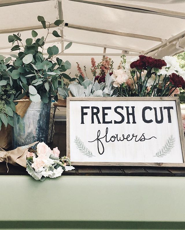 Happy Saturday Knoxville! We are closed today, but if you are in need of some fresh flowers we have a few $15 wrapped bouquets ready to be picked up at Back Porch Mercantile! Just shoot us a message if you want one! 📷 | @happygal.emzatch