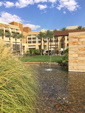Phoenix 19.jpg