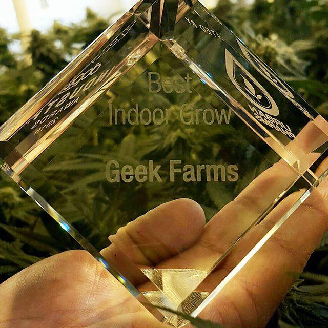 2015 Best Indoor Grow - Dope Industry Awards