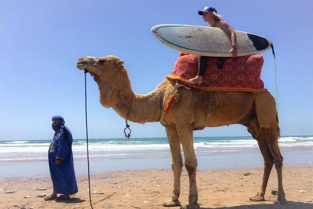 Camel Surf.jpg