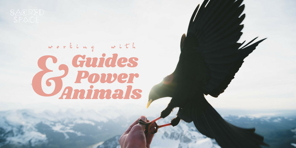 guides-and-power-animals-graphic.jpg