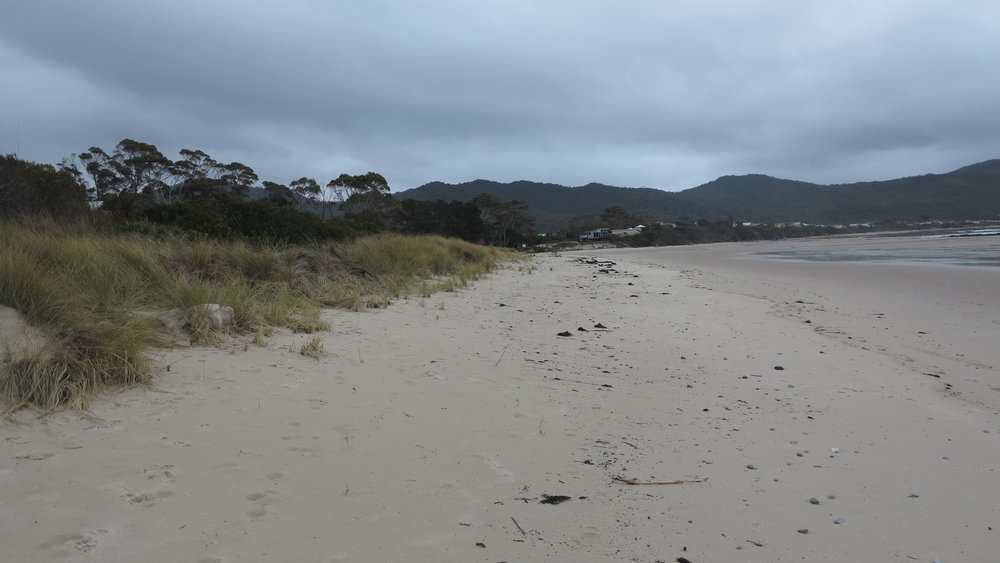 east end beach.JPG