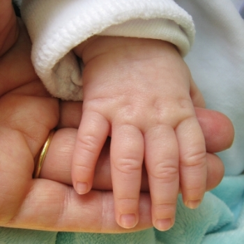 mother and baby hand.jpg