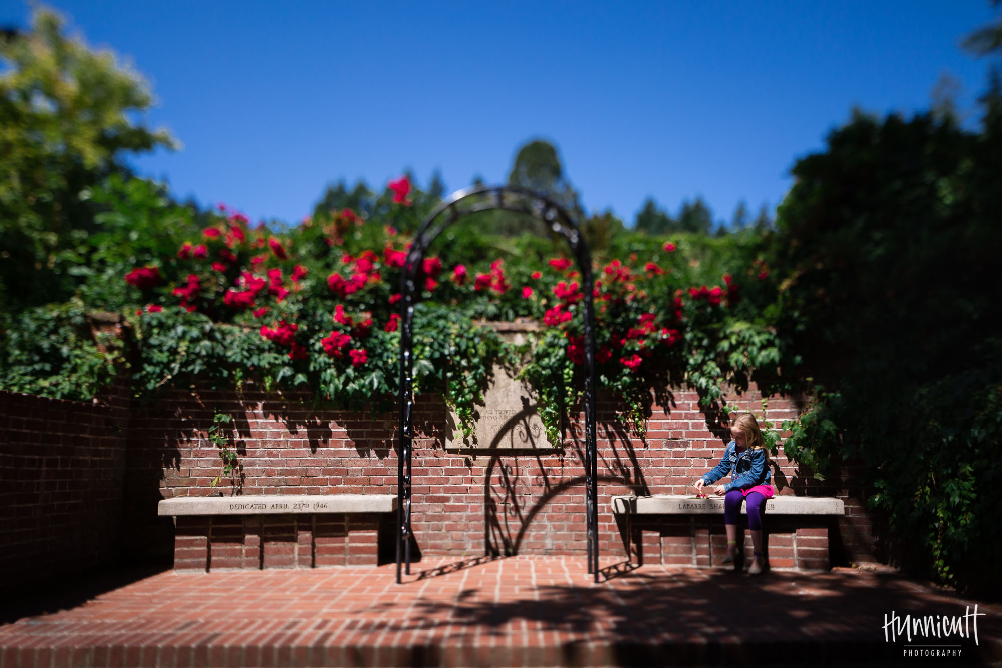 girl_with_red_flowers_portland_rose_garden_rebecca_hunnicutt_farren-2