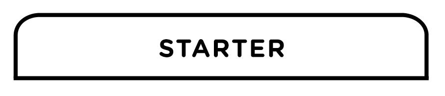 Starter.jpg