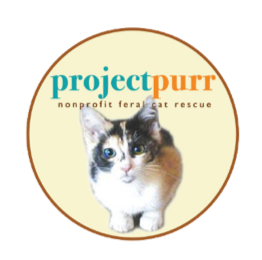project-purr.png
