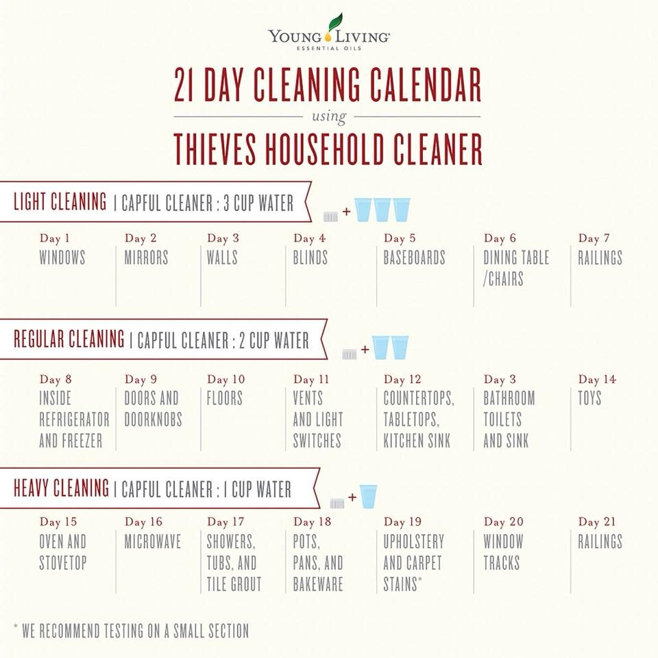 thieves 21 days cleaning calendar.jpg