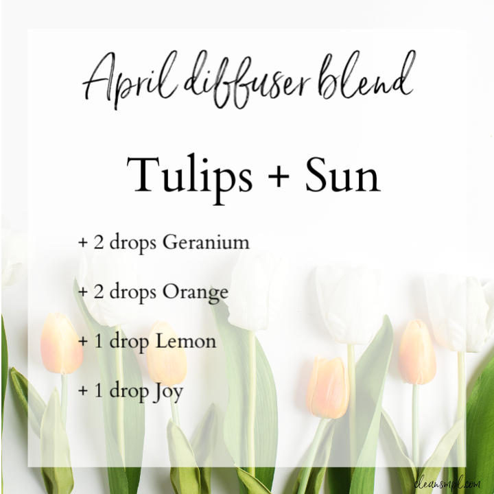 tulip april DB.png