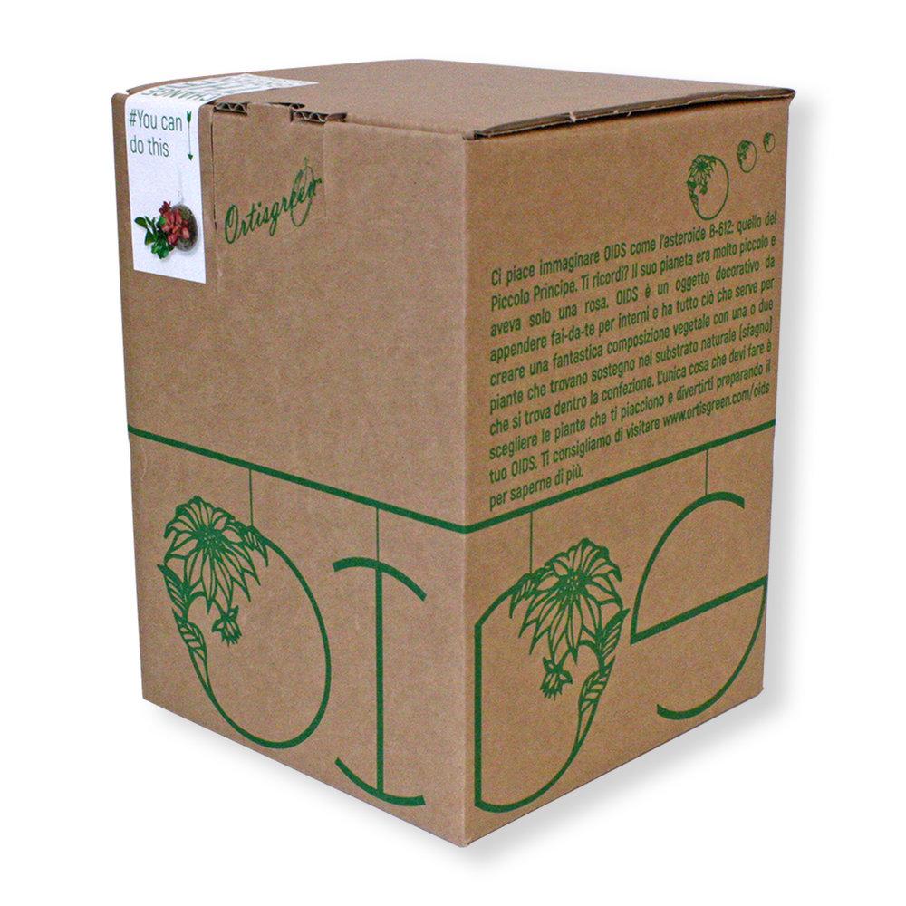 OIDS_BOX_ANGOLO_DX.jpg
