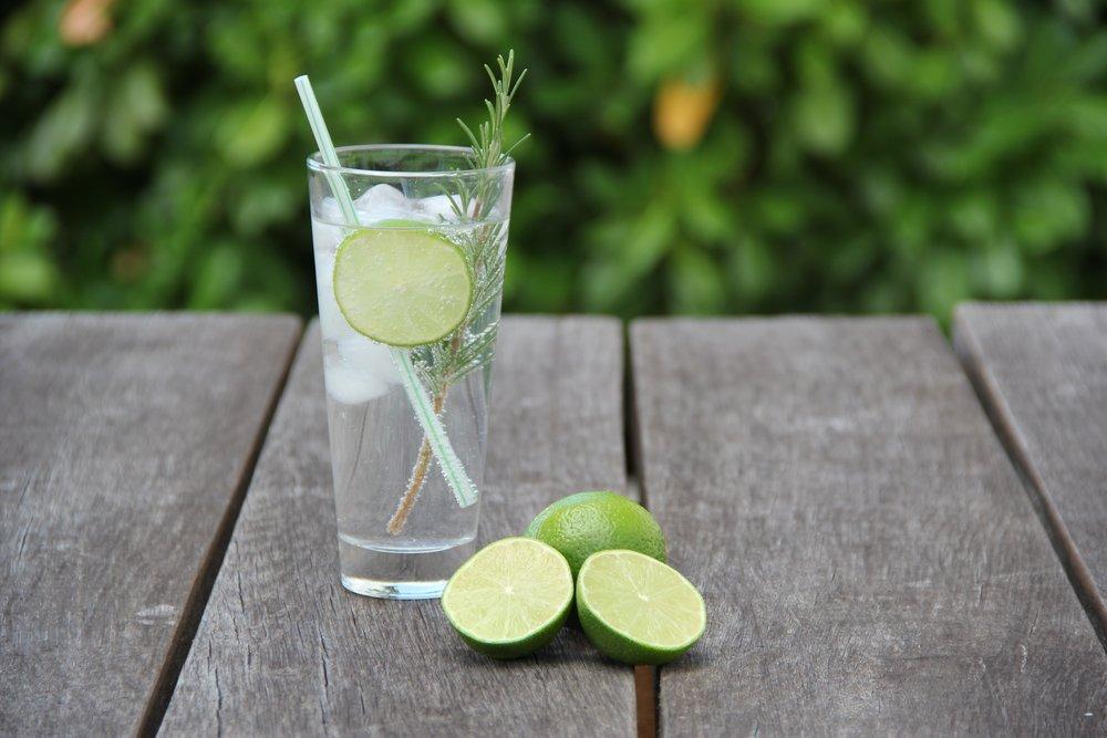 gin-2126375.jpg