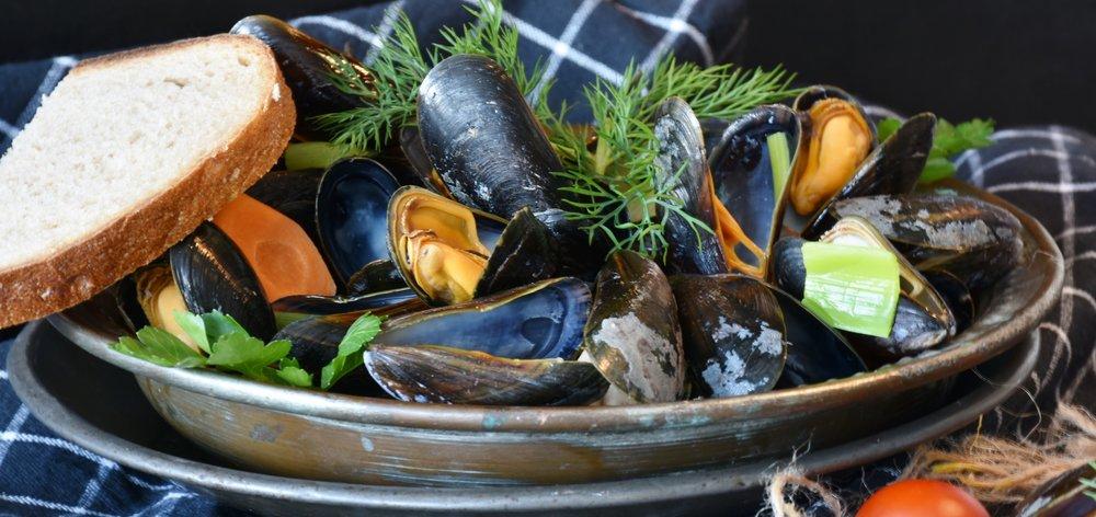mussels-3148439.jpg