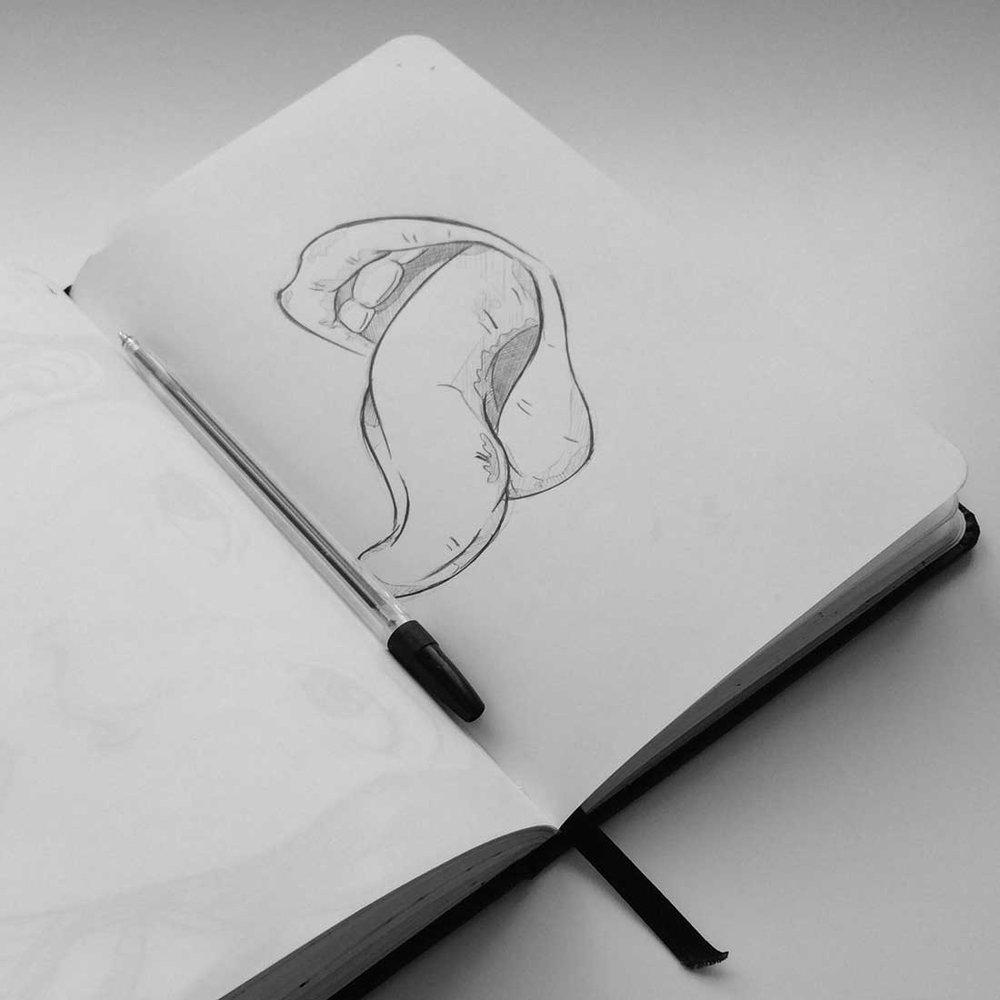 lipss-sketch.jpg