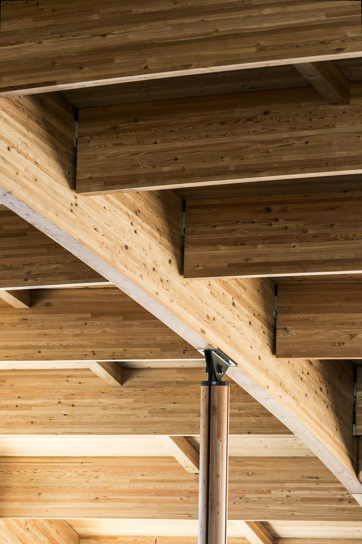 Abbey Wood_for web-9.jpg