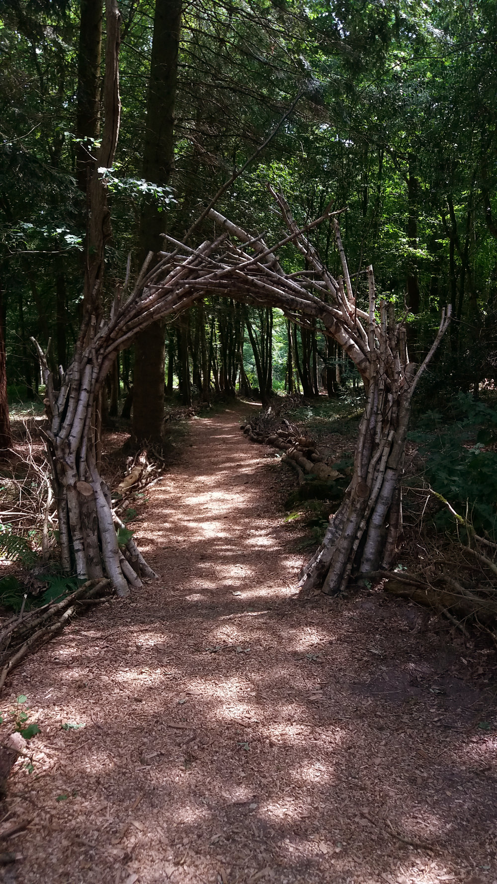 Birch Portal.jpg