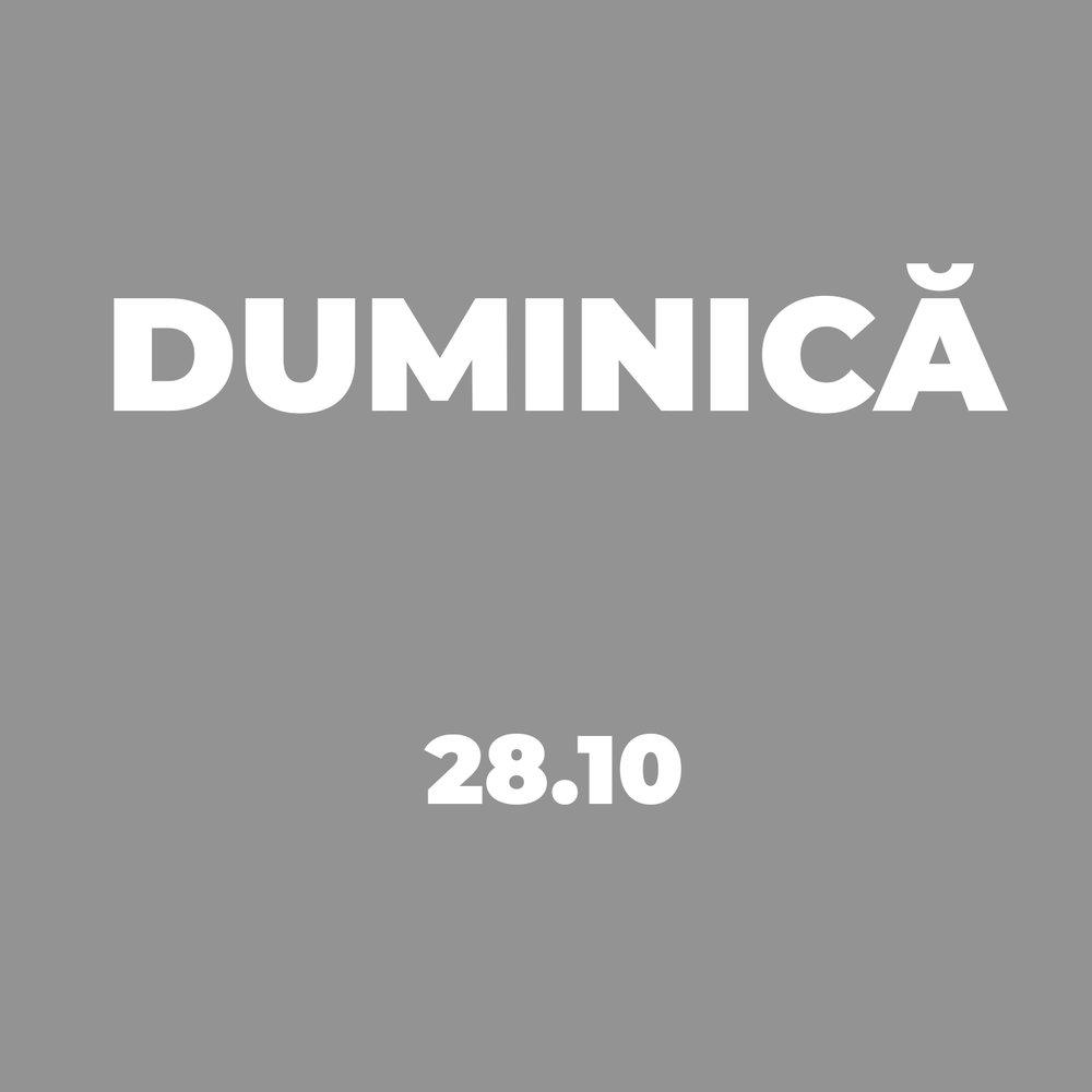 DUMINICA 28.jpg